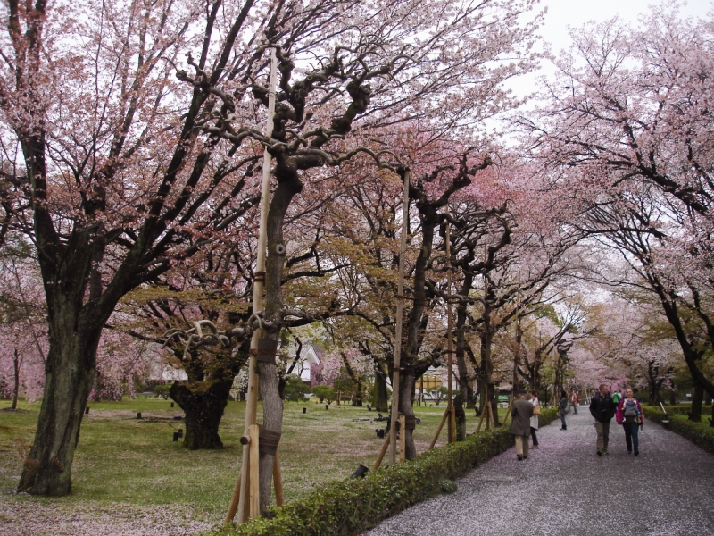 Kyoto Japan Nijo Castle