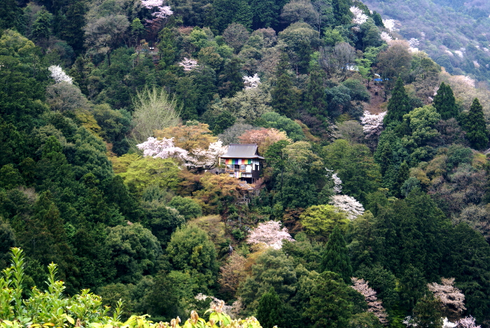 Kyoto Japan Okochi Sanso Arashiyama