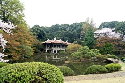 Shinjuku Gyoen National Garden Tokyo Teahouse