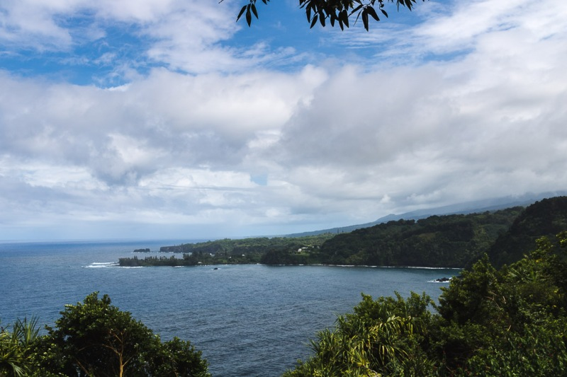 Maui Travel Road to Hana Forest View