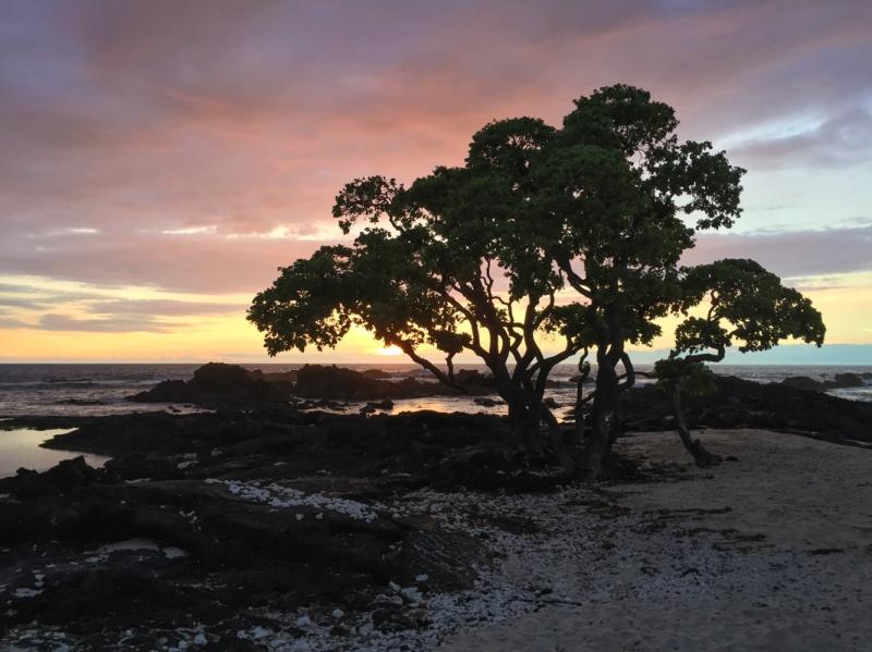sunset hawaii maui big island beach sun