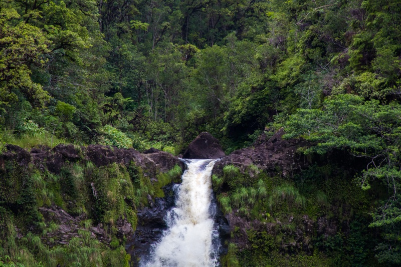 Hawaii Akaka Falls Waterfall