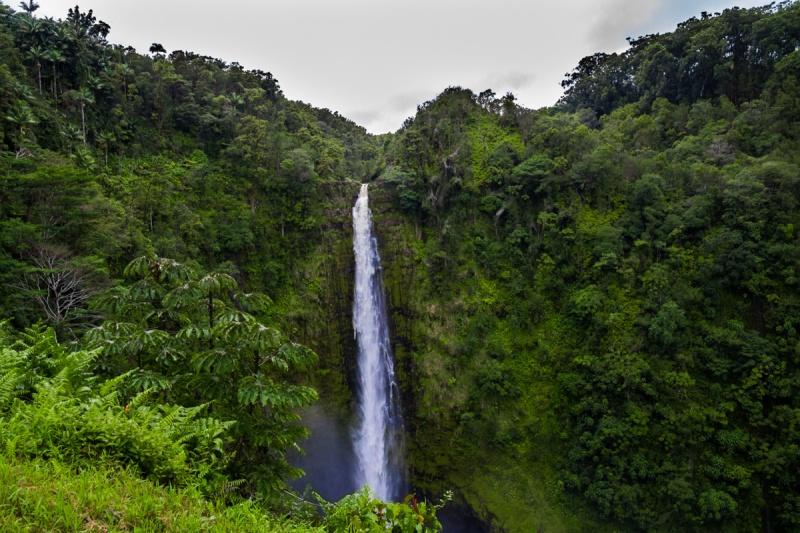 akaka_falls-8c