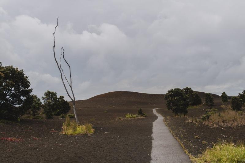 hawaiibig island volcano national park devastation trail