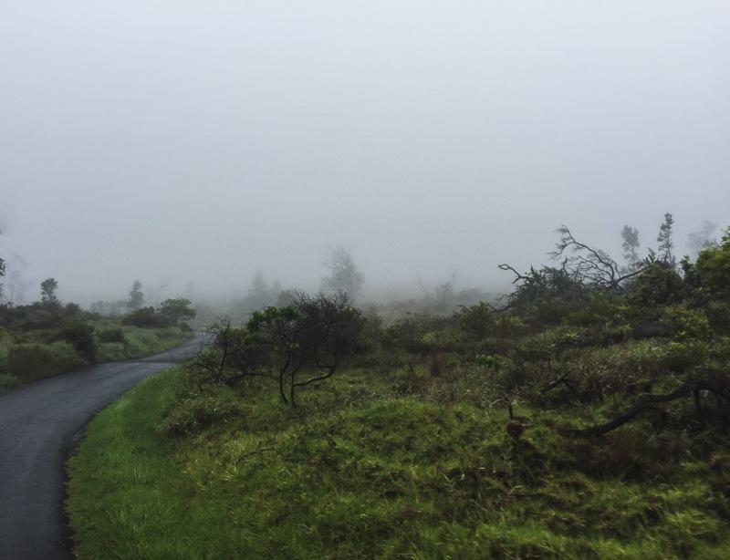 hawaiibig island volcano national park crater forest mist
