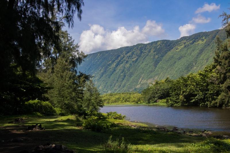 waipio valley big island hawaii beach
