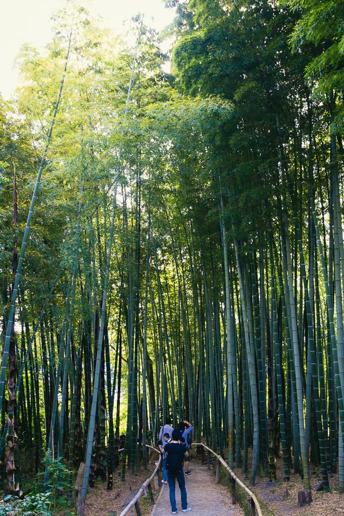 kyoto_kodaiji_maruyama-1